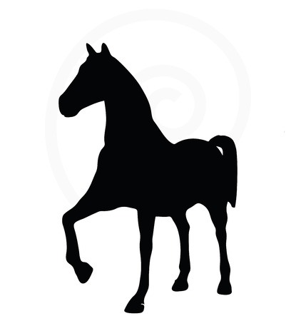 steed: Vector Image - horse silhouette isolated on white background