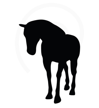 horses: Vector Image - horse silhouette in walking head down pose isolated on white background Illustration