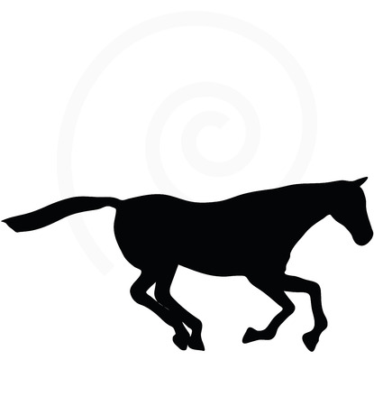 gee: Vector Image - horse silhouette in gallop pose isolated on white background