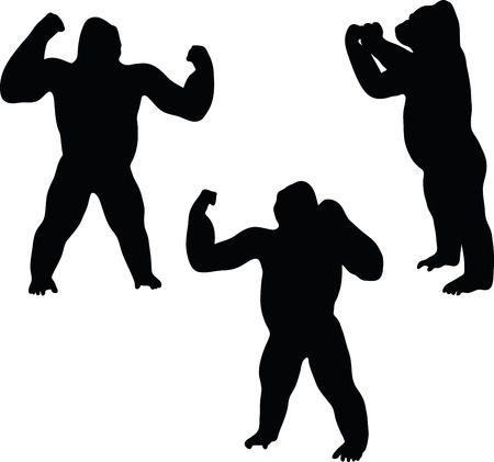 back lit: Vector Image - gorilla silhouette, isolated on white background