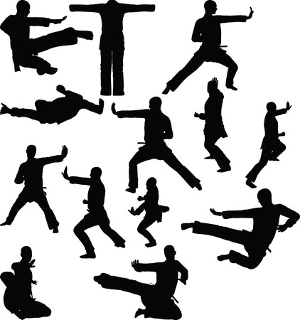 artes marciales: silueta de karate, aislado en fondo blanco