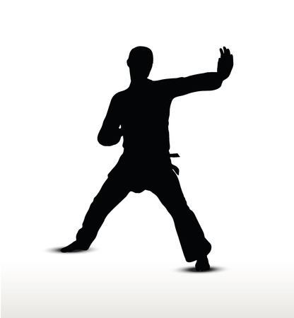shadow silhouette: Vector image - karate silhouette, isolated on white background Illustration