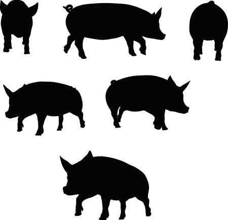 squealer: Vector Image, pig silhouette, in a trot position, isolated on white background