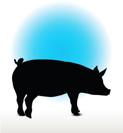 Vector Image, pig silhouette, in a standing position, isolated on white background
