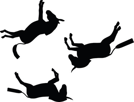 donkey: Vector Image, donkey silhouette, in falling pose, isolated on white background Illustration