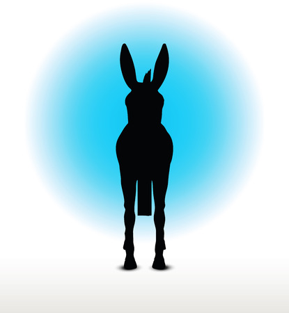 standing on white background: Vector Image, donkey silhouette, in standing pose, isolated on white background