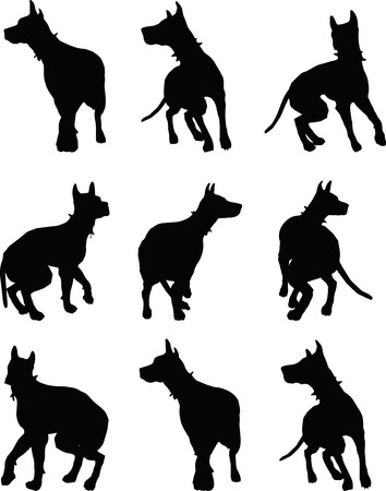 dalmatian puppy: EPS 10 vector illustration of dog silhouette in black