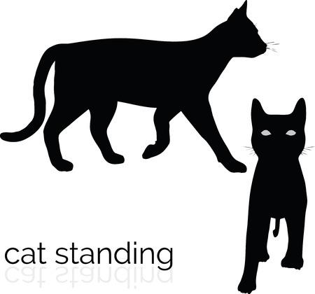 vector illustration of cat on white background Illustration