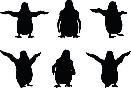 vector illustration of penguin on white background