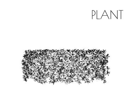 木、植物シルエットの EPS 10 ベクトル イラスト  イラスト・ベクター素材