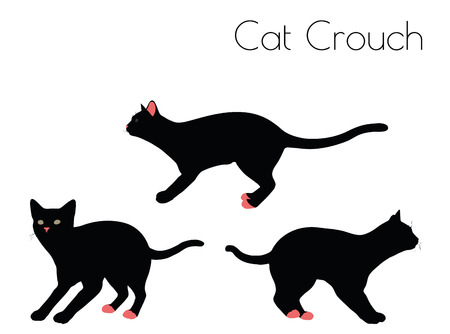 crouch: EPS 10 vector illustration of cat silhouette in Crouch Pose