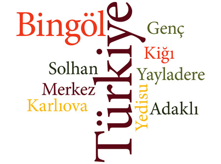 EPS 10 vector Illustration of the Turkish city Bingol subdivisions in word clouds