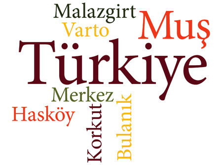 EPS 10 vector Illustration of the Turkish city Mus subdivisions in word clouds