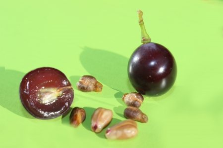 grape and seeds, close up photo