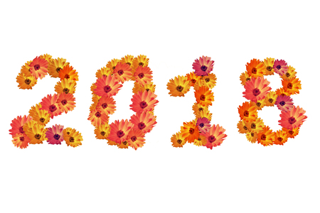 2018 Flower numbers,2018 change represents the new year 2018