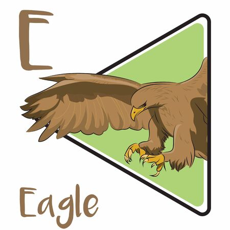 E for eagle, a bird that has a very wide wing and an expert in hunting its prey.