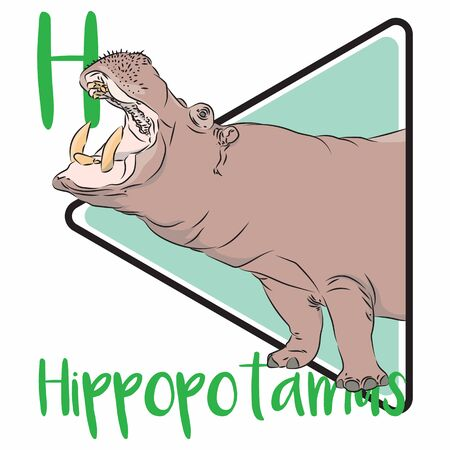 H for Hippopotamus, a large herbivore mammal who love to swim and can be very dangerous to human with their large fangs and powerful jaw.