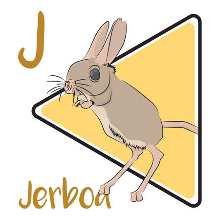 J for Jerboa, hopping desert rodents found throughout Arabia, Northern Africa, and Asia. It can run at up to 24 kilometers per hour and have excellent hearing
