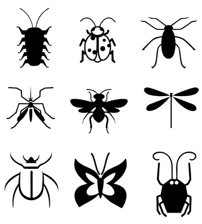 roach: Insect Silhouettes