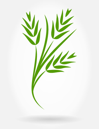 wheat ears vector background Vector