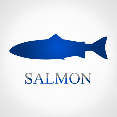 sunfish: Salmon Illustration