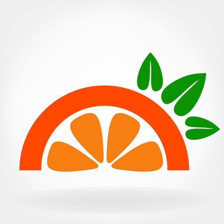 citrus: citrus Illustration