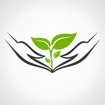 growing plant: hands holding plant vector Illustration