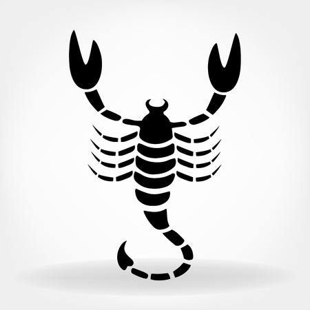 kalahari desert: Scorpion vector Illustration