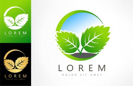 Eco green leaf vector illustration