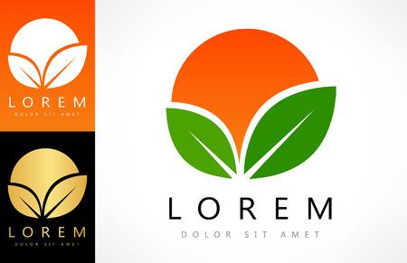 orange logo Zdjęcie Seryjne - 81320429