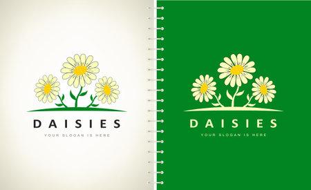 Camomile, daisies logo vector. floral design.