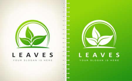 Leaves plants logo vector. Leaf design.