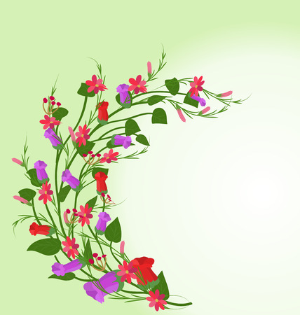 Grass With Flowers Illustration Vector