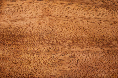 Dark wood texture background. Detail of natural pattern wooden material.