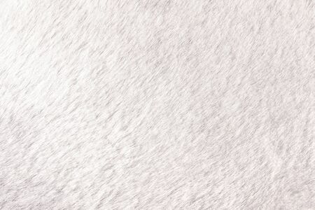 Texture of shaggy fur background. Detail of soft hairy skin material. Standard-Bild - 126134138