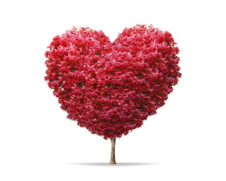 Red blossom tree in heart shape with happiness isolated on pure white background. Valentine tree for decoration romantic concept.