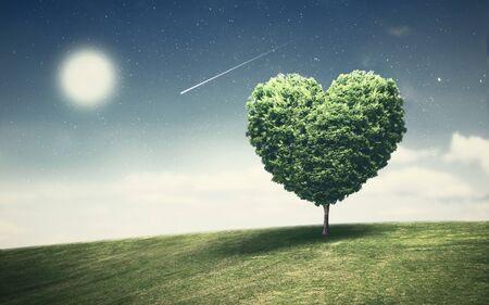 Kształt serca wielkiego drzewa na górskim krajobrazie z fantastycznym nocnym niebem i spadającą gwiazdą. Wspaniałe widoki w samotne i samotne noce. Zdjęcie Seryjne