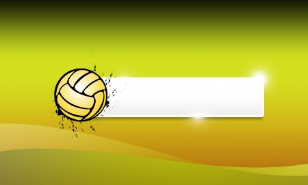 Abstract grunge Volleyballs or handball background with space photo