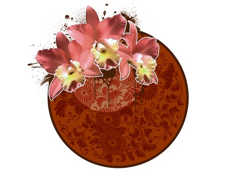 thai orchid: Grunge color flower poster background with space