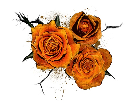 Abstract grunge color rose flower poster background