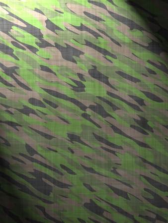 enlightening: Military camouflage substance enlightening (magazine, background, leaflet)