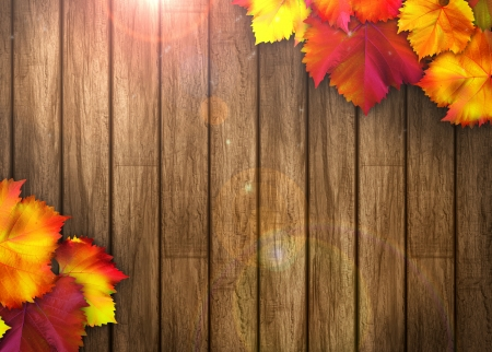 fence background: Nature autumn sale design background with space