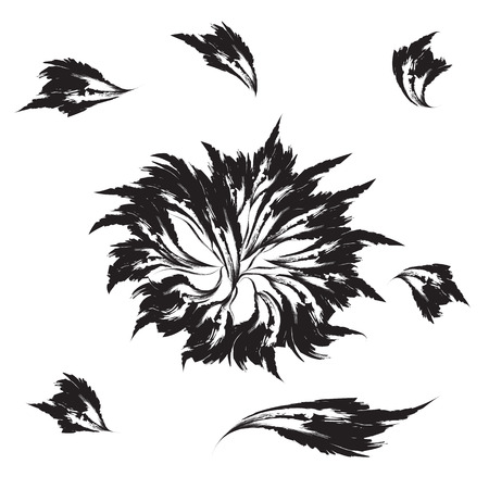 stimulate: isolated black flower and petals on a white background abstract illustration Illustration
