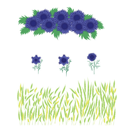 wheat grass: Set of grass wheat   and blue flowers  wreath of cornflowers   isolated on white background   decor spring