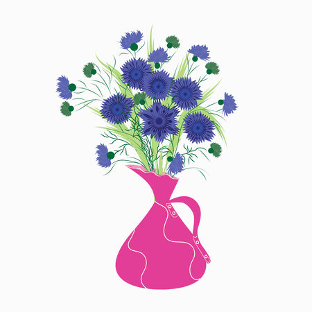 sedge: Spring bouquet of cornflowers isolated on white background in pink pitcher Illustration