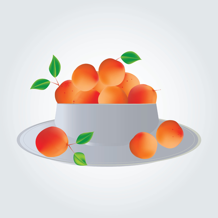 apricots: apricots in a plate isolated illustration modern art white background Illustration