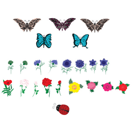 flora fauna: Set decor spring summer flora fauna peony rose bud cornflower butterfly ladybug isolated on white background