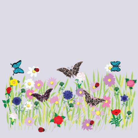 fleurs des champs: fleur champ pr� herbe lit plusieurs fleurs de couleur herbe de bl� marguerite pivoine rose fleurs de bleuet coccinelles papillon d�cor printemps-�t� isol� sur un fond clair Illustration