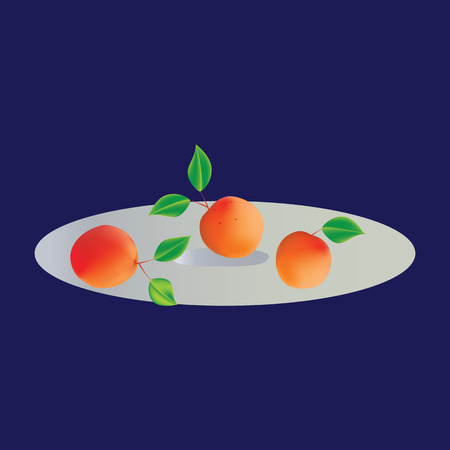 apricots: Apricots with leaves on a plate isolated art abstract modern illustration of a blue background SET composition design elements for juice yogurt jam Illustration