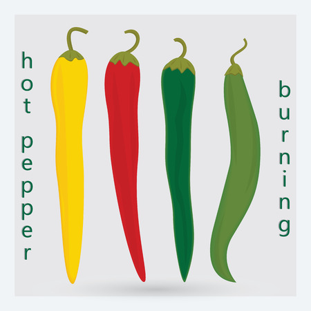 pepper burning hot red yellow green light green art abstract creative isolated on a light background vector design element